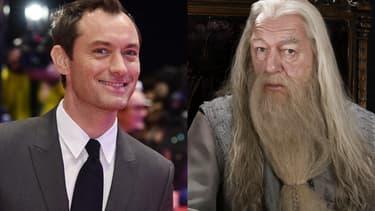 """Jude Law interprétera un jeune Dumbledore dans le second volet des """"Animaux Fantastiques 2"""""""