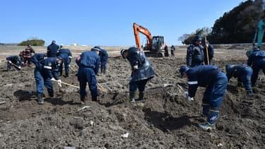 Des policiers cherchent des personnes disparues sur la zone de Fukushima en mars 2017, 6 ans après la catastrophe (image d'illustration)