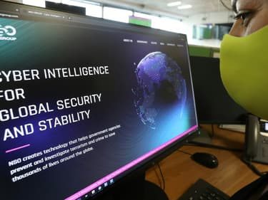 Une femme regarde le site du logiciel d'espionnage Pegasus de la société israélienne NSO le 21 juillet 2021 à Nicosie (photo d'illustration)