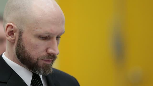 Anders Behring Breivik lors de son procès qui l'oppose à l'État norvégien sur ses conditions de détention le 10 janvier 2017