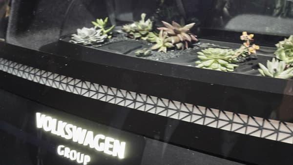 Les petits cactus jouent le rôle de filtre à air... on est bien dans un concept !