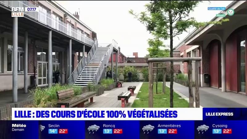 Lille: des cours d'école bientôt 100% végétalisées