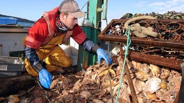 Pêcheurs français et britanniques se disputent une zone de pêche située dans la baie de Seine. Des altercations ont éclaté en mer la semaine dernière