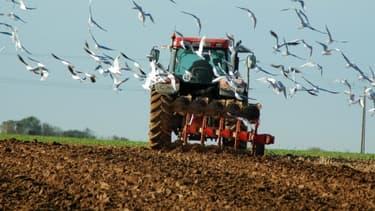 Selon le ministère de l'Agriculture, le revenu moyen avant impôt d'un exploitant agricole est de 45 000 euros/an.