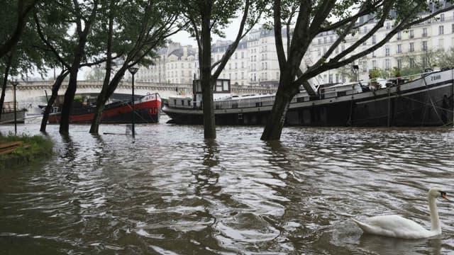 Des péniches naviguant sur la Seine, le 31 mai 2016, à la suite des fortes pluies s'étant abattues sur Paris et dans toute la France.