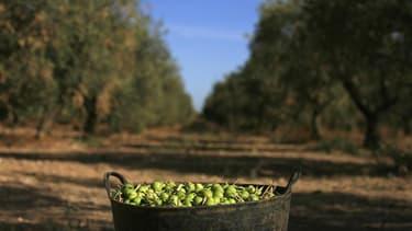 La France, l'Italie et l'Espagne sont convenues mardi de maintenir la stabilité du budget de la Politique agricole commune (PAC) après 2013 lors des négociations sur le cadre financier pluriannuel de l'Union européenne. /Photo prise le 24 septembre 2012/R