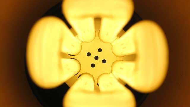 Philips décline la lumière sous toutes ses formes, une activité qui lui a rapporté 7 milliards d'euros en 2013.