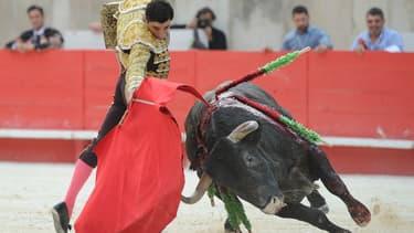 Une corrida dans les arènes de Nîmes. (Photo d'illustration)