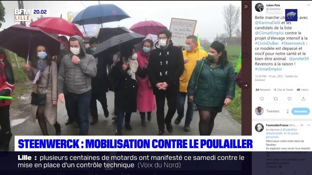 Nord: plusieurs centaines de personnes réunies contre un projet de poulailler géant à Steenwerck