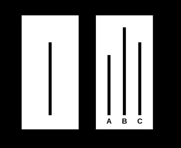 A gauche, la ligne de référence et à droite, les différents choix proposés