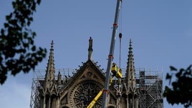 La cathédrale abrite deux faucons (illustration).