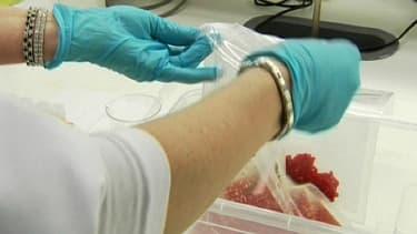 Analyse de viande dans un laboratoire.