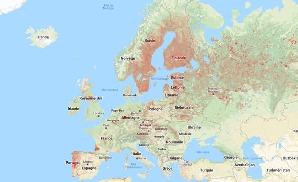 Carte d'Europe des zones touchées par la perte de surfaces forestières entre 2000 et 2019.