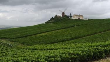 Le champagne a vu ses ventes reculer en France et en Europe, au cours du premier semestre.