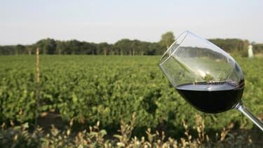 La France,détrônée depuis 2014 par l'Italie, redevient le premier producteur mondial de vin