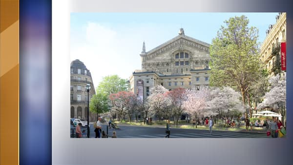 "Une ""forêt urbaine"" sera bientôt installée derrière l'opéra Garnier"
