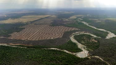 L'Argentine est le premier exportateur mondial de soja transformé, et les exportations sont lourdement taxées.