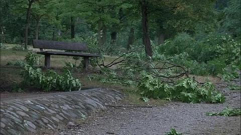 À Firminy, la tempête a fait de nombreux dégâts
