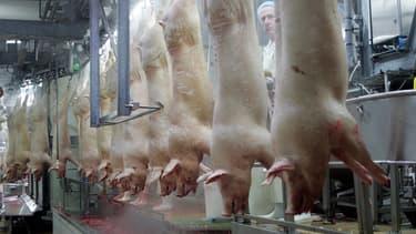 Cooperl est un groupe français d'importance pour la filière porcine et le territoire breton.