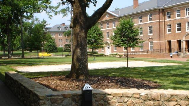 L'université de Caroline du Nord à Chapel Hill. (illustration)