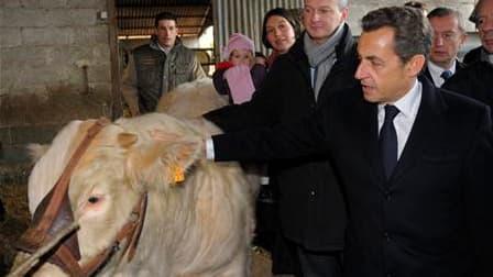 Lors d'une table ronde avec des agriculteurs de l'Allier, Nicolas Sarkozy a déclaré que la France a France proposerait à ses partenaires du G20 la création d'une organisation agricole internationale pour coordonner les productions. /Photo prise le 25 nove