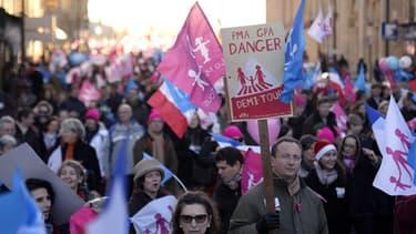 Une manifestation de la Manif pour tous à Versailles, le 15 décembre 2013.