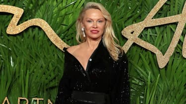 Pamela Anderson 2017