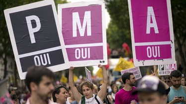 Les candidats de la primaire à gauche ne défendent pas tous l'ouverture de la PMA aux couples de femmes et aux célibataires.