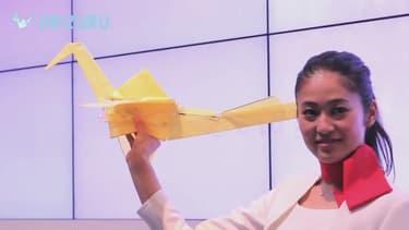 Le Lazurite Fly vole comme un véritable oiseau - Capture d'image YouTube