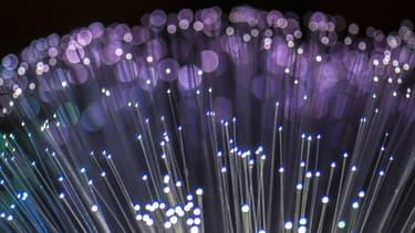 Des câbles en fibre optique.