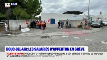 Bouches-du-Rhône: les salariés d'Apperton à Bouc-Bel-Air en grève
