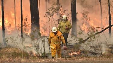 Des pompiers australiens face aux flammes, en Nouvelle-Galles du Sud, le 1er janvier 2020