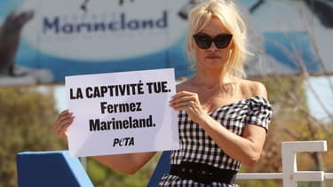 Pamela Anderson devant Marineland à Antibes, en août 2017