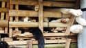 Des milliers de chats entassés dans des caisses ont été retrouvés à l'arrière d'un camion, mardi 27 janvier, par les autorités vietnamiennes.