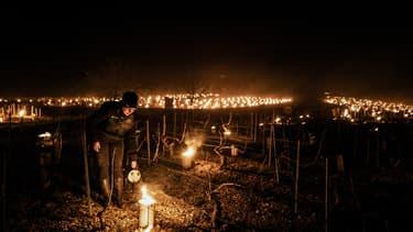 Un producteur de chablis en Bourgogne qui chauffe la vigne pour limiter l'impact du gel.