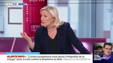 """Immigration : """"Si nous avions été entendus, nous ne serions pas dans cette situation"""", Marine Le Pen - 15/11"""