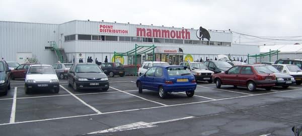 Mammouth a été absorbé par le groupe Auchan via les Docks de France.