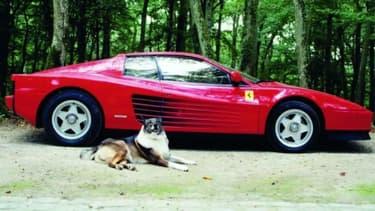 Selon AutoPlus, la Ferrari d'Alain Delon est estimée entre 40 et 80 000 euros