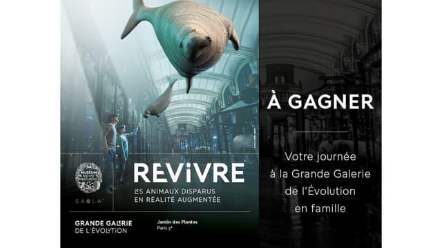 VOTRE JOURNEE A LA GRANDE GALERIE DE L'EVOLUTION