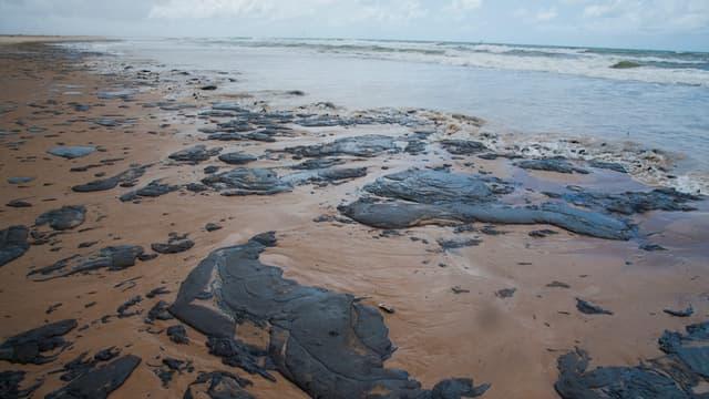 Marée noire sur une plage de Pirambu au Brésil, le 25 septembre 2019