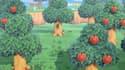 Animal Crossing: New Horizons a été lancé en France le 20 mars.