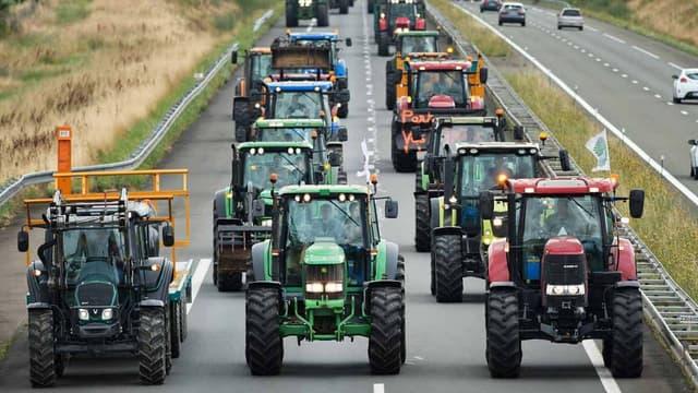Une colonne de tracteurs sur l'A81 (image d'illustration).