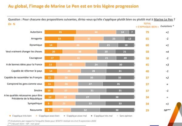 L'image de Marine Le Pen.