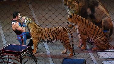 Une représentation de cirque (Photo d'illustration).