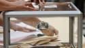 Les députés français ont adopté mardi en seconde lecture le projet de loi qui repousse à 2015 les élections cantonales et régionales et modifie les modes de scrutins locaux. /Photo d'archives/REUTERS/Jean-Paul Pélissier