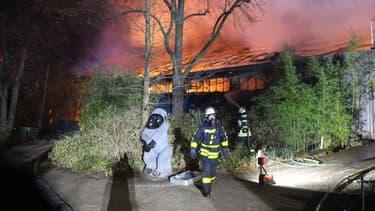 L'enclos des singes en flammes, au zoo de Krefeld.