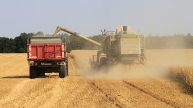 La France compte plus de 70.000 céréaliers qui exportent pour 5 milliards d'euros par an.