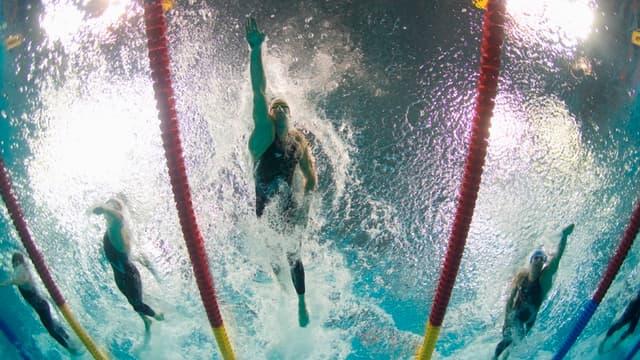 Alain Bernard est champion olympique, d'Europe et vice-champion du monde 2009 du 100m