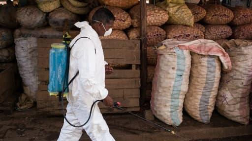 Un homme désinfecte les rues le long du marché, à Antananarivo le 10 octobre 2017.