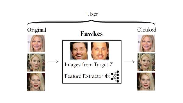 Transformation réalisée par le logiciel Fawkes